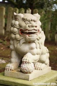 三国神社(福井県坂井市三国町山王)24