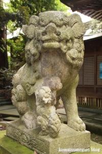 三国神社(福井県坂井市三国町山王)33