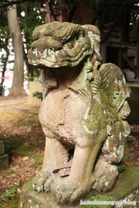 三国神社(福井県坂井市三国町山王)47