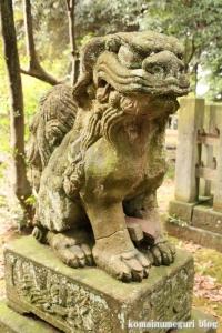 三国神社(福井県坂井市三国町山王)51