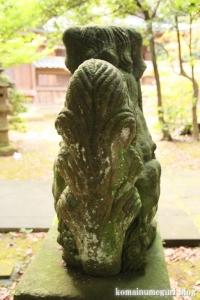 三国神社(福井県坂井市三国町山王)49