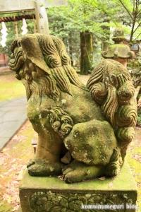 三国神社(福井県坂井市三国町山王)52