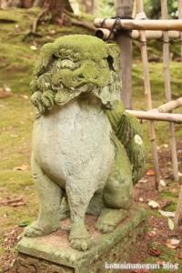 三国神社(福井県坂井市三国町山王)104