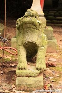 三国神社(福井県坂井市三国町山王)110