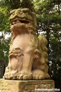 三国神社(福井県坂井市三国町山王)118