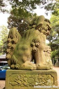 三国神社(福井県坂井市三国町山王)119