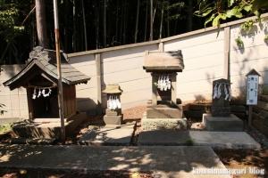 下田神社(横浜市港北区下田町)16