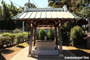 橘樹神社(川崎市高津区子母口)4
