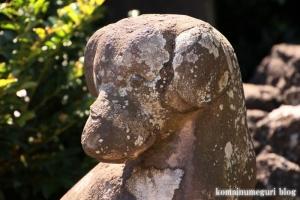 橘樹神社(川崎市高津区子母口)36