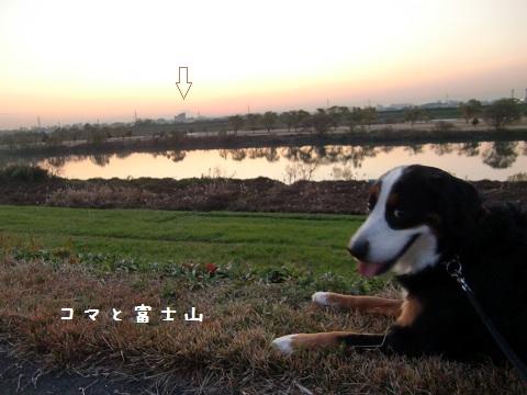 コマと富士山