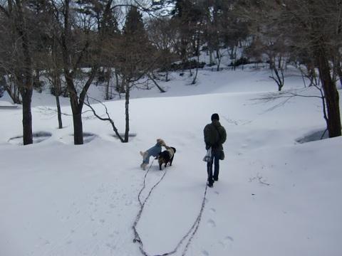 鳥取雪遊び3