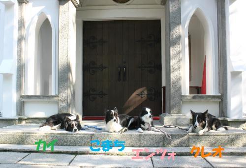 2012_08_31_7141_convert_20120903070713.jpg