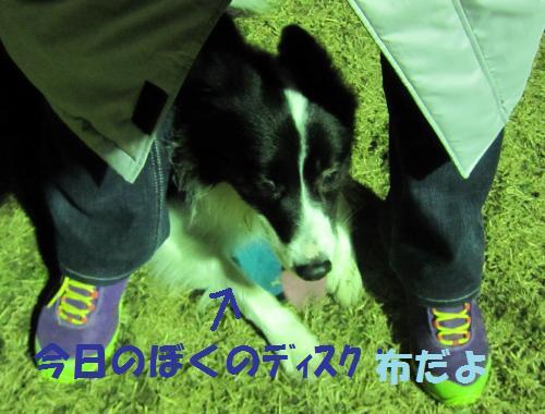IMG_5643_convert_20111221200324.jpg