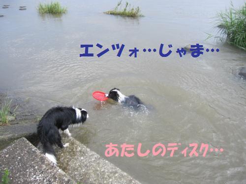 IMG_7402_convert_20120716081347.jpg