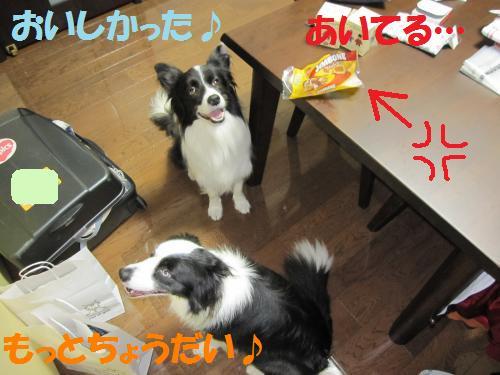 IMG_8137_convert_20121017231014.jpg