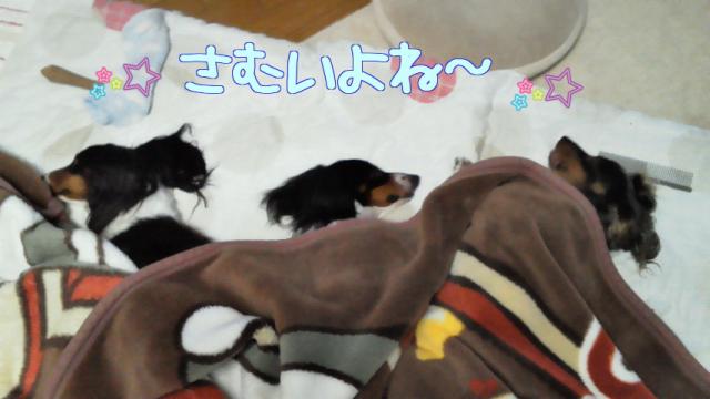 縺輔・縺Юconvert_20111210001127
