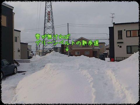 T8O3GxhJdfJPhHB1360765012_1360765178 (1)