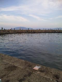 音海の漁港