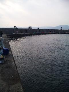 音海の漁港4