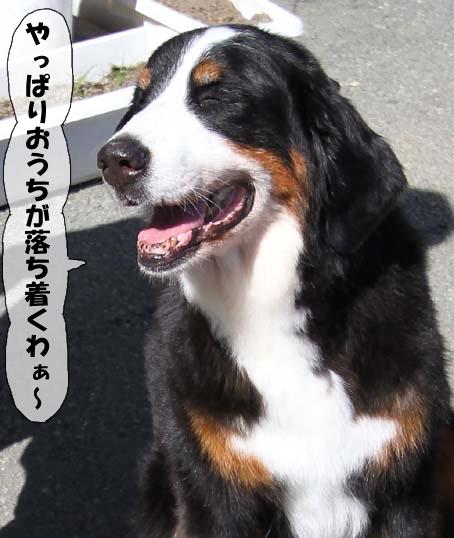 20100718-106.jpg