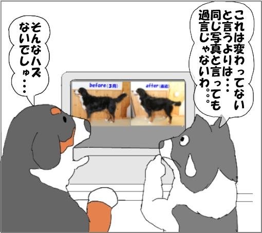 20100918-06.jpg
