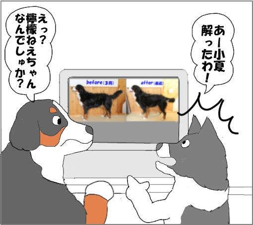 20100918-07.jpg
