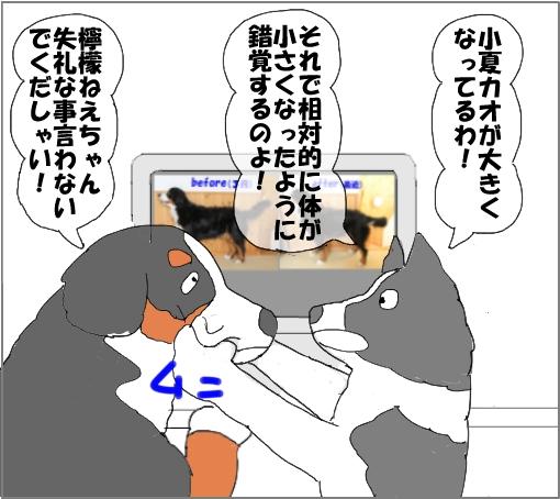 20100918-08.jpg