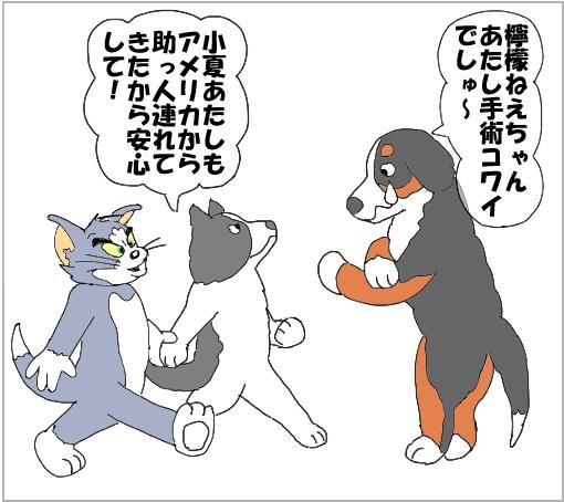 20101009-03.jpg
