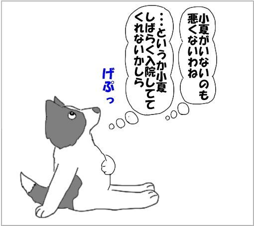 20101015-06.jpg