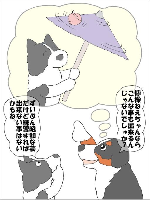 20101015-110.jpg