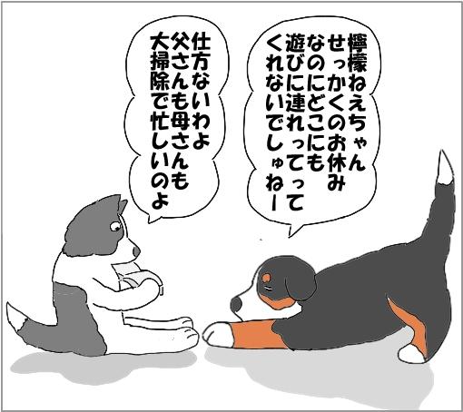 20101231-01.jpg