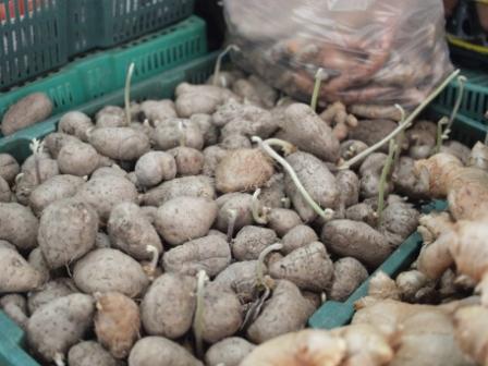 タラートジャガイモ