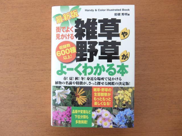 DSCF8402_convert_20141019150955.jpg