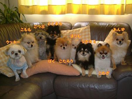 2005_0228(006).jpg