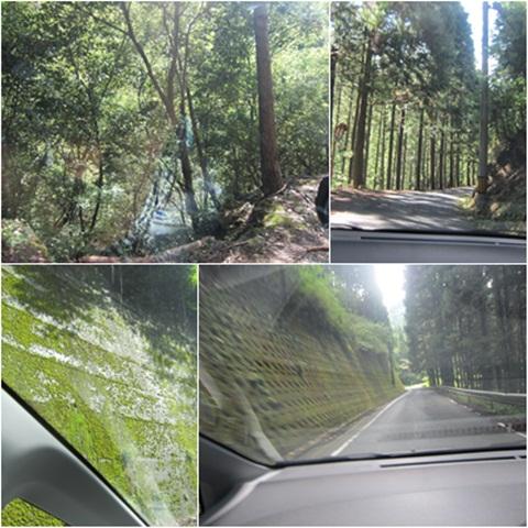 山道to高野山