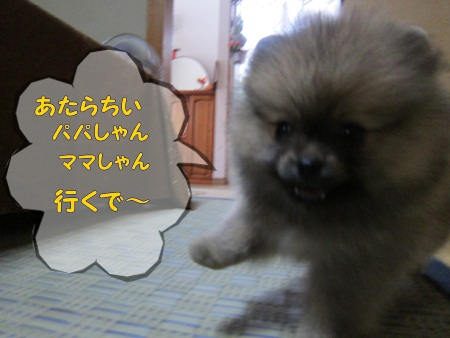IMG_5577.jpg