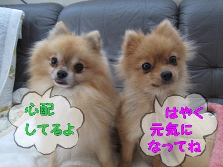 IMG_7641.jpg