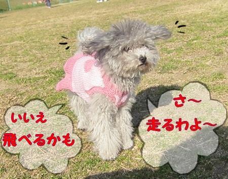 IMG_8979.jpg