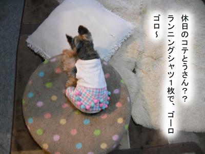 burokoteのコピー