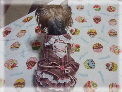 burochekku_20101008053414.jpg