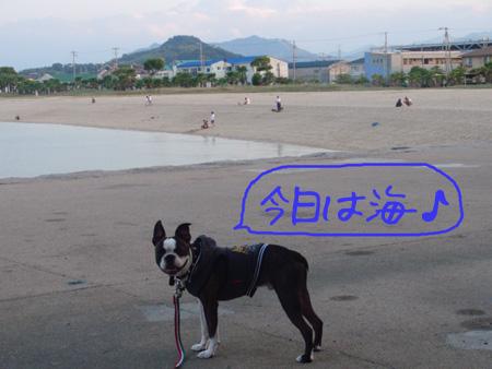 100925_3.jpg