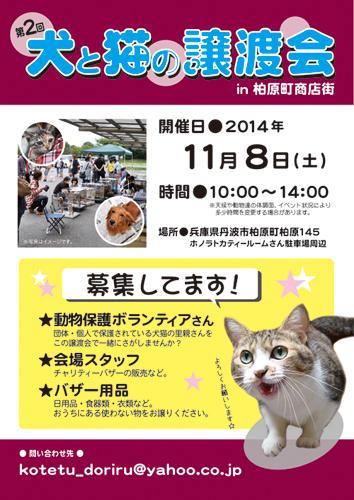 2014.11.8譲渡会ポスター++