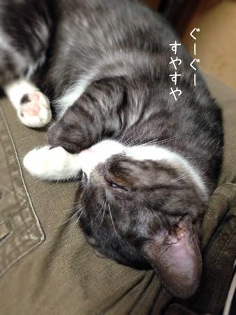 レバー2014.11.1②
