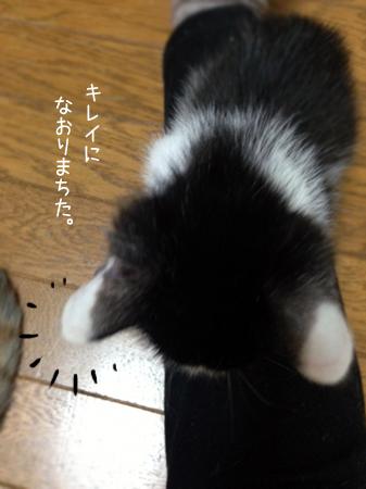 牛太郎2014.11.5②