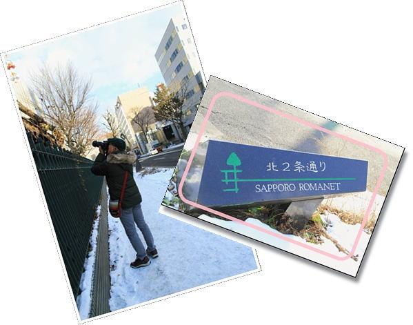 image_20121201185930.jpg