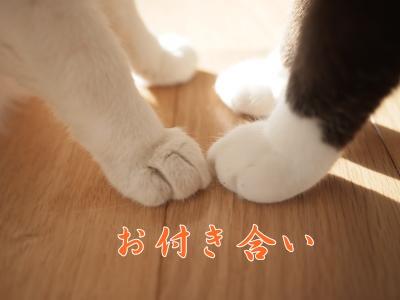 011_convert_20131231161310.jpg