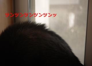 047_convert_20140107232736.jpg