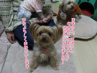 IMG_0206_20120227161231.jpg