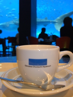 oceanblue3.jpg