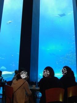 oceanblue4.jpg
